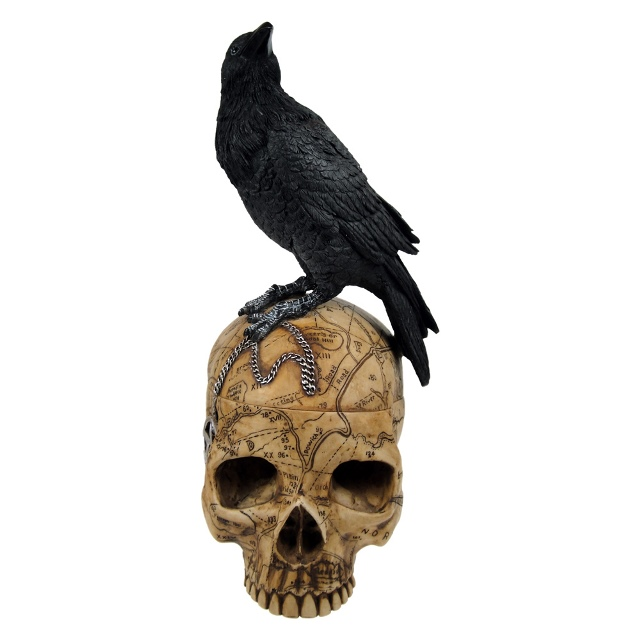 Salem Witch Skull With Pentacle and Raven Crow Trinket Box