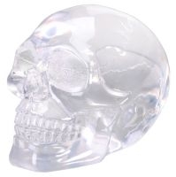Spooky Clear Small Translucent Skull