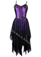Dark Star Gothic Purple & Black Satin Velvet Dress