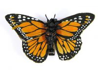 Hairy Scary Orange & Black w Orange Eyes Large Kahlovera Skull Butterfly Feather Hair Clip